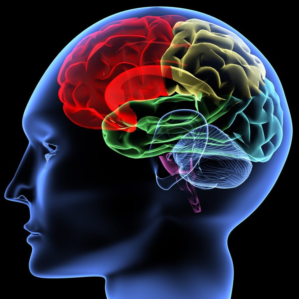 A traumatic brain injury from a serious car accident could turn your life upside down.